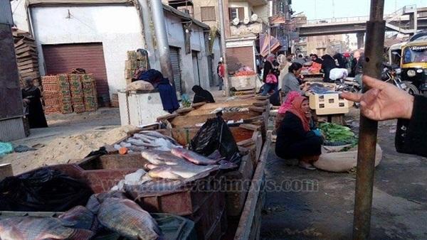 البوابة نيوز: بالصور.. تسونامي الأسعار يضرب  حلقات الأسماك