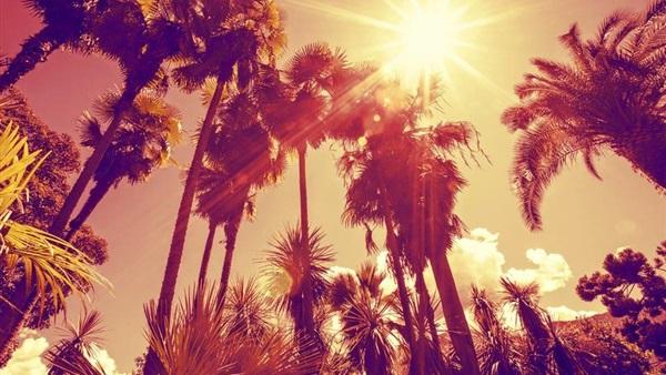 : الأرصاد: طقس الجمعة شديد الحرارة على أغلب أنحاء الجمهورية