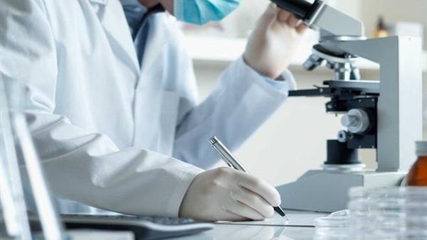 اكتشاف أسرار عدم شيخوخة بعض الخلايا