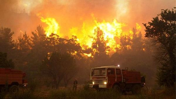 : حريق غابات ضخم في فرنسا قرب الحدود الإسبانية