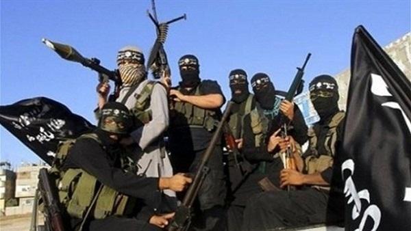 : الذئاب المنفردة.. استراتيجية  داعش  العابرة للحدود