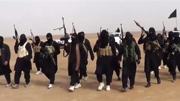 : ألمانيا: لا نصرًا دائمًا على داعش في العراق  حتى الآن