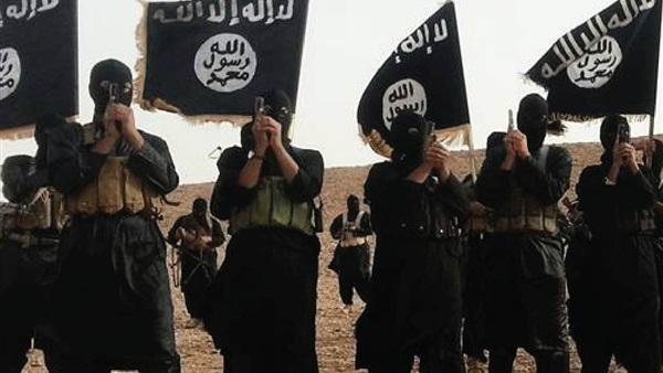 : علي بكر: استراتيجية  الذئاب المنفردة  أهم أسلحة داعش