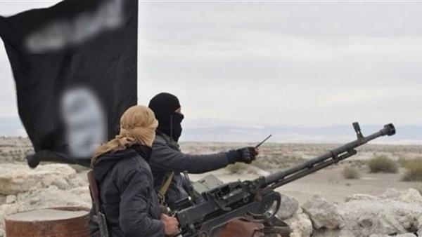 : كما انفردت   .. ذئاب «داعش» المنفردة تستعد لـ«جهاد المونديال»