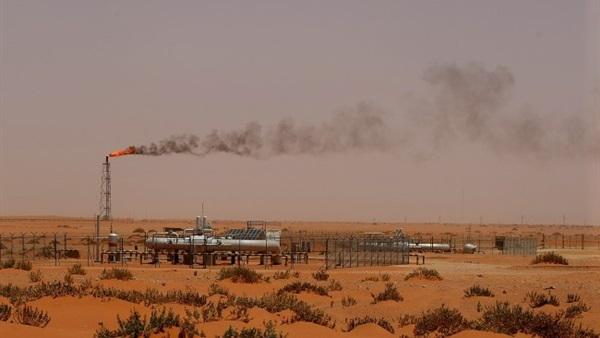 :  التفتيش البيئي : مصانع الأسمنت المستخدمة للفحم تخضع لرقابة صارمة