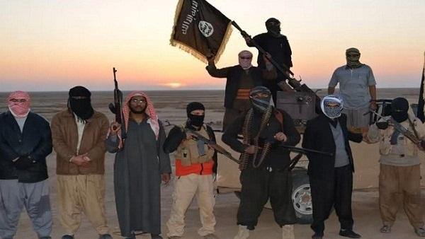 :  داعش .. هزيمة وهروب من المعارك