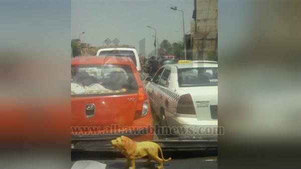 : بالصور.. شلل مروري بمحيط جامعة القاهرة