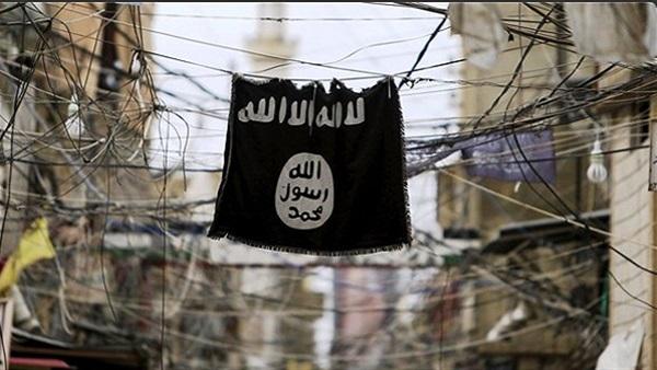: الهزائم تتوالى على  داعش .. والتنظيم ينهار في سوريا