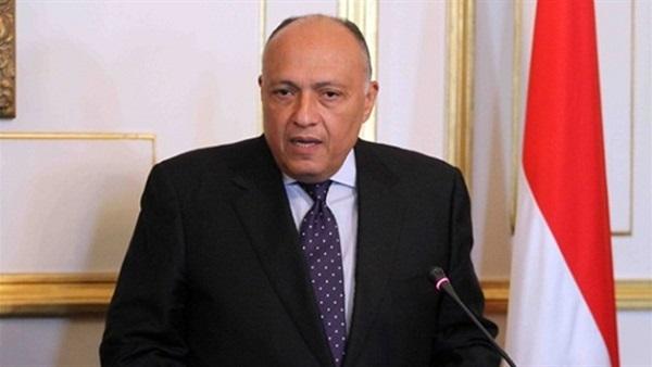 : بالفيديو..  شكري : التدخلات الأجنبية في ليبيا تزيد الأمور تعقيدا