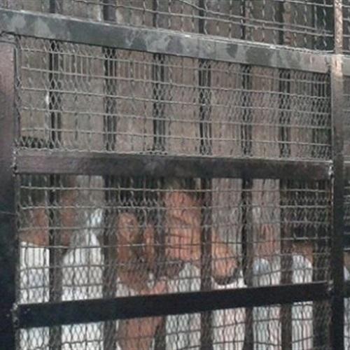 :  الإسلامبولي : إعدام قاتل أطفال سيدي جابر أول إنجاز لوزير الداخلية