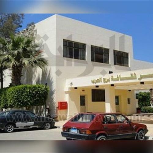 : نجوم السينما المصرية في احتفالية عيد الأم بقصر ثقافة برج العرب
