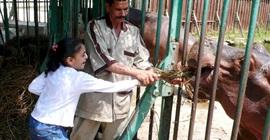 حدائق الحيوان تعلن الطوارئ لاستقبال الزائرين في عيد الأضحى