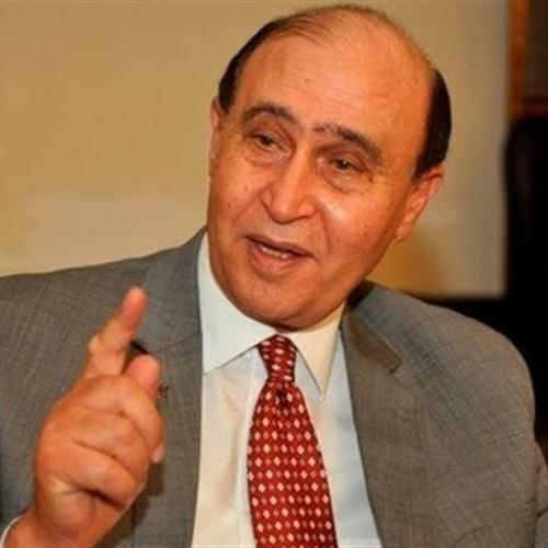 :  مميش : مشروع تنمية محور قناة السويس هو مستقبل مصر