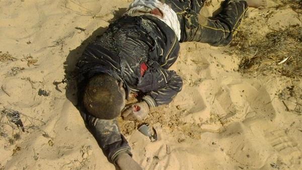 مقتل 20 إرهابيًا في قصف جوي بسيناء 222