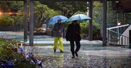 بالصور.. أمطار غزيرة تُغرق اليابان تزامنًا مع انطلاق الانتخابات التشريعية