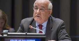 بالفيديو.. فلسطين: لغة المشروع المصري تحافظ على الوحدة الدولية