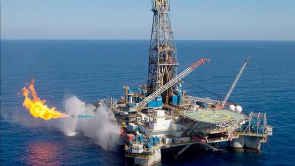 : البترول: اختيار 142 شابا من بورسعيد للعمل بحقل ظهر