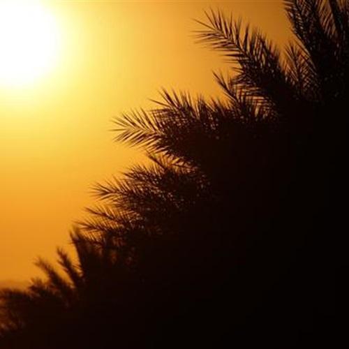 : اليوم.. طقس مائل للحرارة على السواحل الشمالية حار رطب على القاهرة