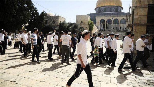194 مستوطنا يقتحمون باحات المسجد الأقصى