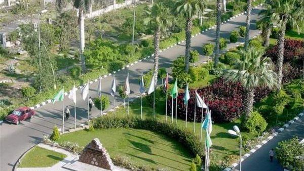 57 عالما بجامعة المنصورة ضمن الأكثر تأثيرا على مستوى العالم