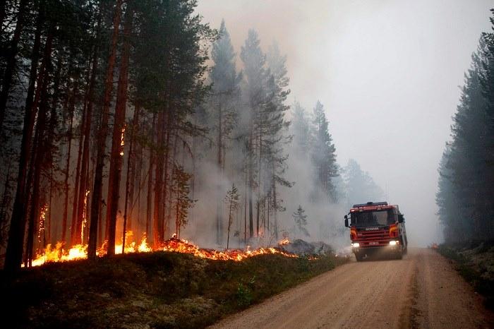 بالصور.. غابات السويد تحترق والسلطات تناشد الاتحاد الأوروبي بالتدخل