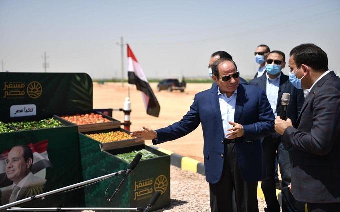 السيسي يتفقد الحصاد الموسمي للمحاصيل بمشروع مستقبل مصر