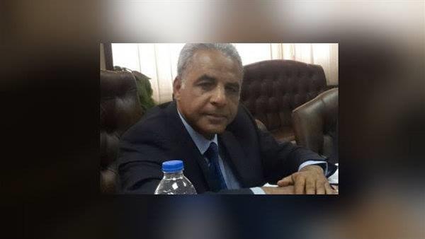 جمال شوقي عضو المجلس
