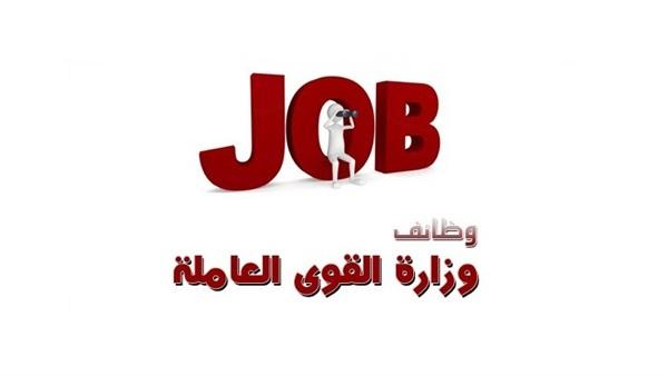 : للباحثين عن فرصة عمل.. 304 وظائف توفرها وزارة القوى العاملة