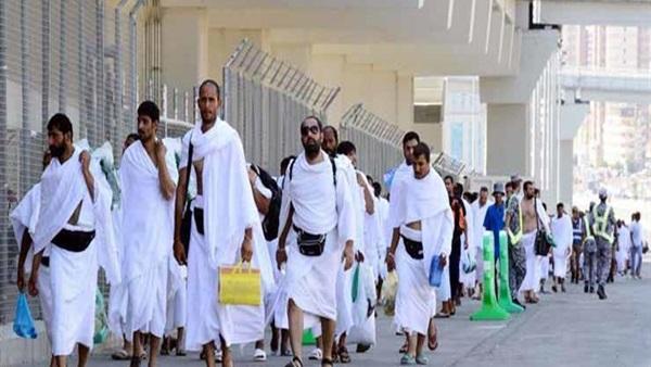 : لجنة الحج بالمدينة المنورة تعلن وصول نصف مليون حاج