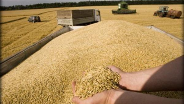 نتيجة بحث الصور عن 5000 طن من الحبوب الروسية إلى سورية في شهرين