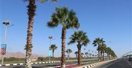 طقس مائل للحرارة بجنوب سيناء.. والعظمى في شرم الشيخ 37