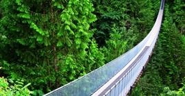 تعرف على أخطر جسور حول العالم
