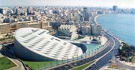 اليوم.. مكتبة الإسكندرية تحتفل بيوم اليتيم
